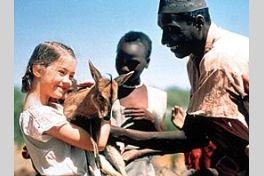 名もなきアフリカの地での画像