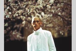 凶気の桜の画像