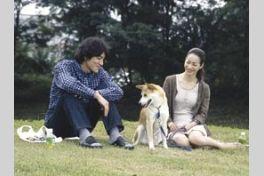犬と歩けば チロリとタムラの画像