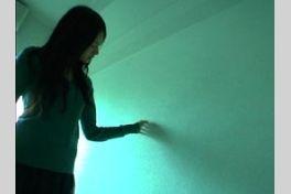ともしび(2004)の画像