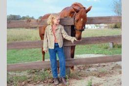 夢駆ける馬ドリーマーの画像