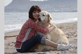 犬と私の10の約束の画像