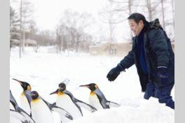 旭山動物園物語 ペンギンが空をとぶの画像