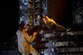 WORLD CLASSICS@CINEMA 2011「ドン・ジョヴァンニ」