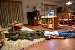 家に帰ると妻が必ず死んだふりをしています。の画像