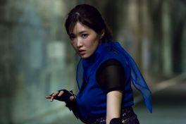 LADY NINJA 青い影の画像