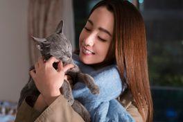 猫は抱くものの画像