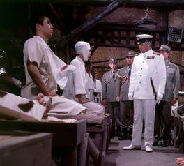 連合艦隊司令長官 山本五十六の画像