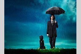 Sweet Rain 死神の精度の画像