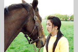三本木農業高校、馬術部 盲目の馬と少女の実話の画像