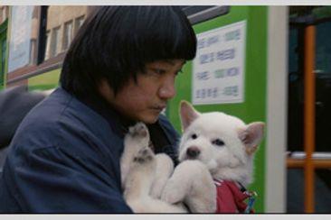 ムサン日記 白い犬
