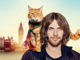 ボブという名の猫 幸せのハイタッチの画像