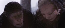 猿の惑星:聖戦記(グレート・ウォー)の画像