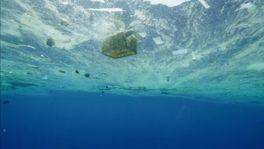 プラスチックの海の画像