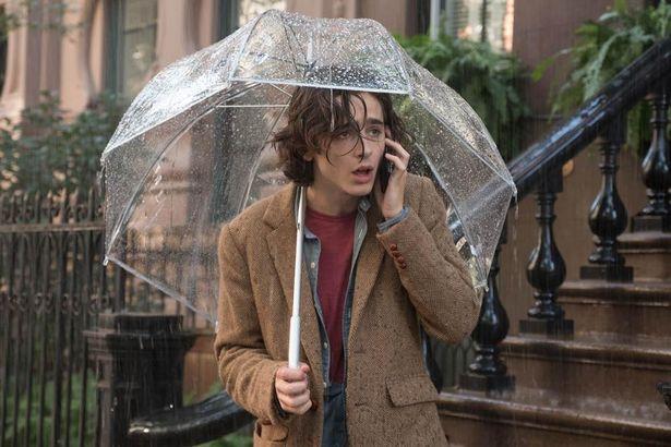 傘を差すシャラメ