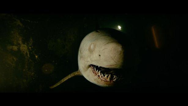 夏と言えばサメ映画!個性的な作品たちをおさらい!(『海底47m 古代マヤの死の迷宮』)