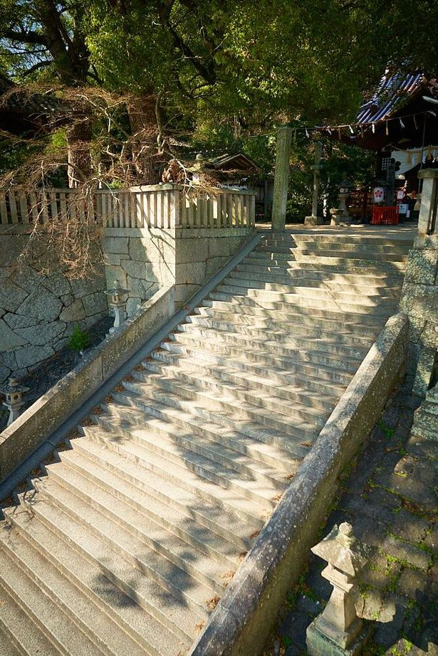 立派な石段は55段にもなる