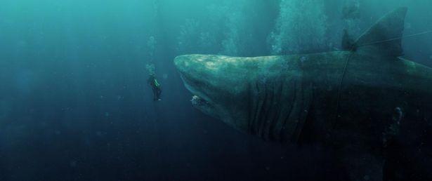 200万年前に絶滅したと思われていた古代魚メガロドンがステイサムの今回の相手