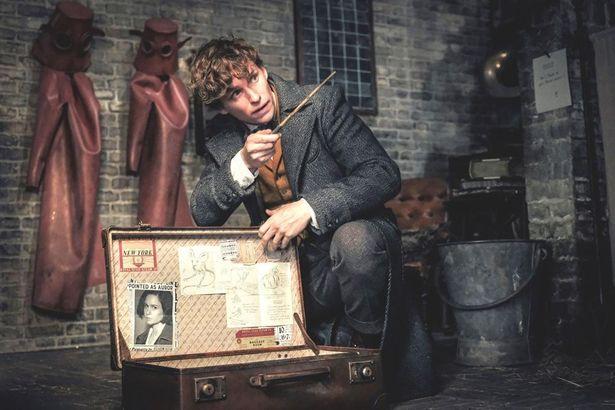 「ハリー・ポッター」シリーズとのつながりも強くなってきた『ファンタスティック・ビーストと魔法使いの誕生』