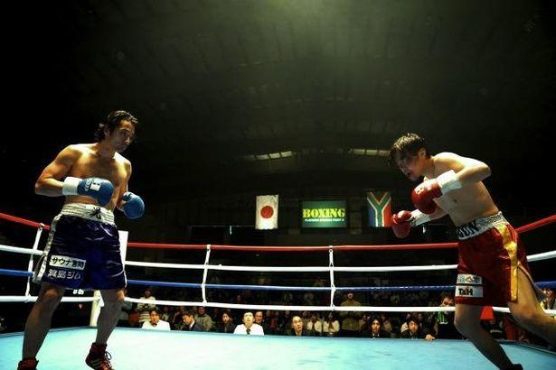 ド迫力のボクシングシーン