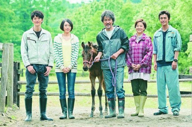 長男・拓馬を失った家族は、拓馬が命と引き換えに守った子馬・リヤンを競走馬に育てようと奮闘