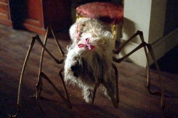 イヌの体を突き破って生えた足が何とも恐ろしい