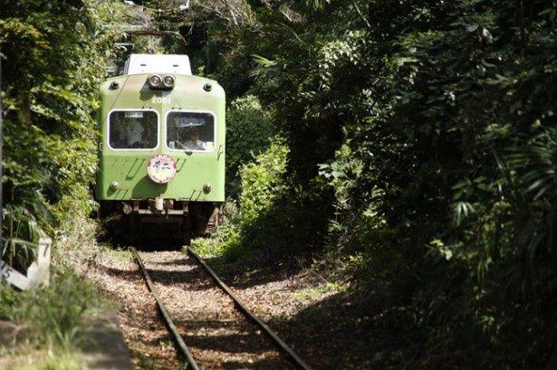 緑豊かな銚子の町中を走る銚子電鉄の車両たち