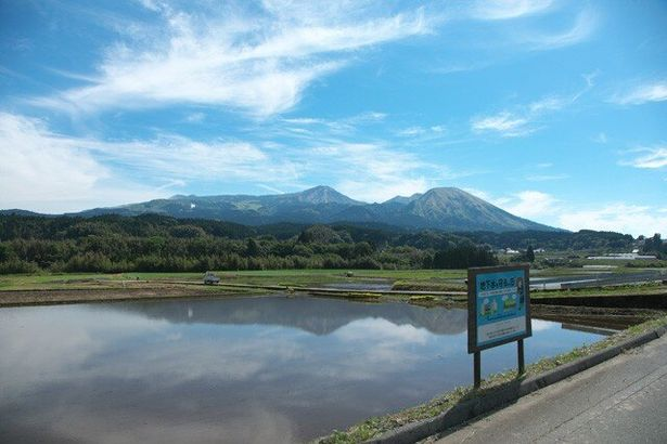 烏帽子岳や杵島岳など阿蘇五岳を眼前に臨む工場前の水田。1年中水を張り、そこで育てたお米を食べることで地下水保全活動を行っている