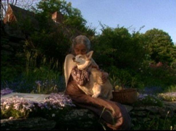 大好きなコーギー犬と戯れる時間もターシャ・テューダーさんにとっては至福のひととき