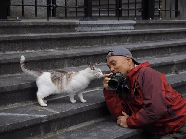 """ネコたちと仲良くなる秘訣""""ネコ目線""""が岩合さん流"""