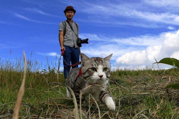 旅ネコ「ニャン吉」と一緒に阿蘇をパトロール