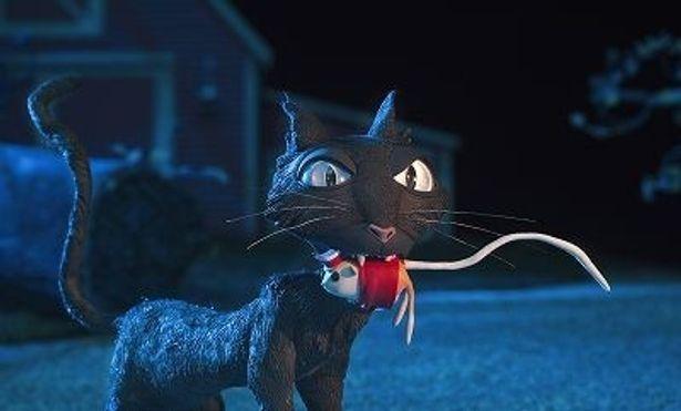生意気な黒猫が後をつけてくる