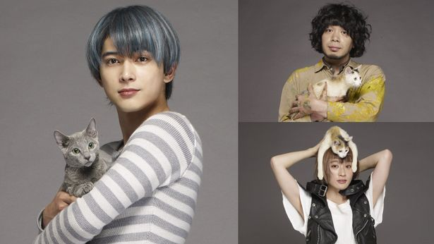 「猫は抱くもの」追加キャストの吉沢亮(左)、峯田和伸(右上)、コムアイ(右下)