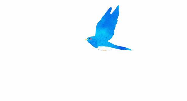 """""""青い鳥""""の姿が印象的なビジュアル"""