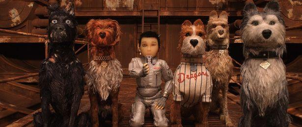 【写真を見る】『グランド・ブダペスト・ホテル』のスタッフが結集!日本を舞台にした『犬ヶ島』は見逃せない