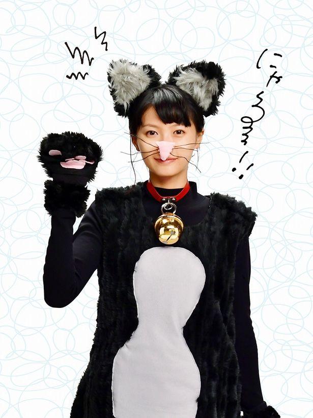 """もはや""""死んだふり""""じゃない?榮倉奈々が可愛いネコに変身"""