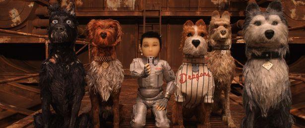 """コーユーが演じたのは愛犬を探しに""""犬ヶ島""""に上陸する少年・アタリ"""