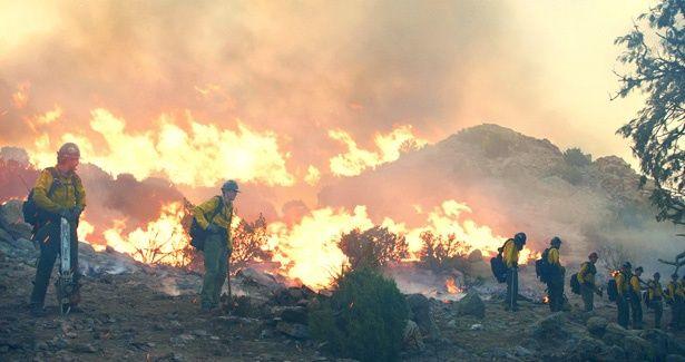 チェーンソーで草木を伐採し、スコップで塹壕を作りながら山火事を消化する