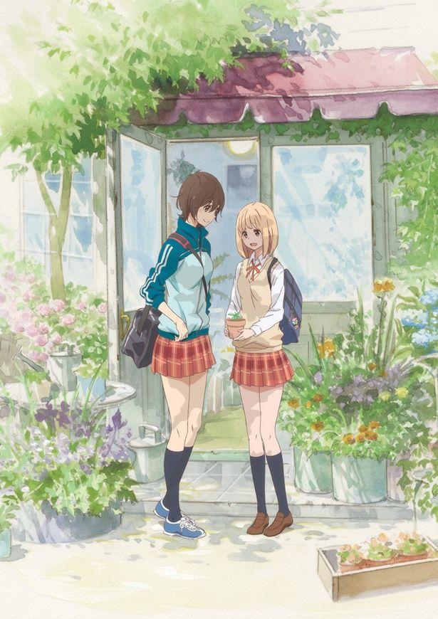 女の子同士のピュアな恋を描いた『あさがおと加瀬さん。』は6月9日(土)より公開