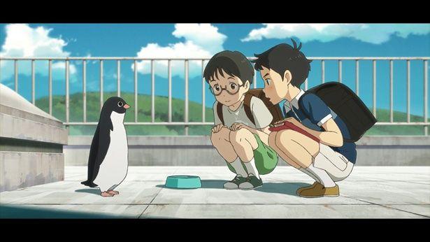 """""""ペンギン""""出現の謎に挑むアオヤマ君の成長を描いた『ペンギン・ハイウェイ』は8月17日(金)より公開"""