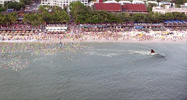 賑わうビーチに超巨大ザメが出現