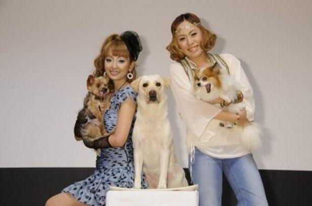 愛犬を連れてイベントに参加した神田うの、Metis、きな子