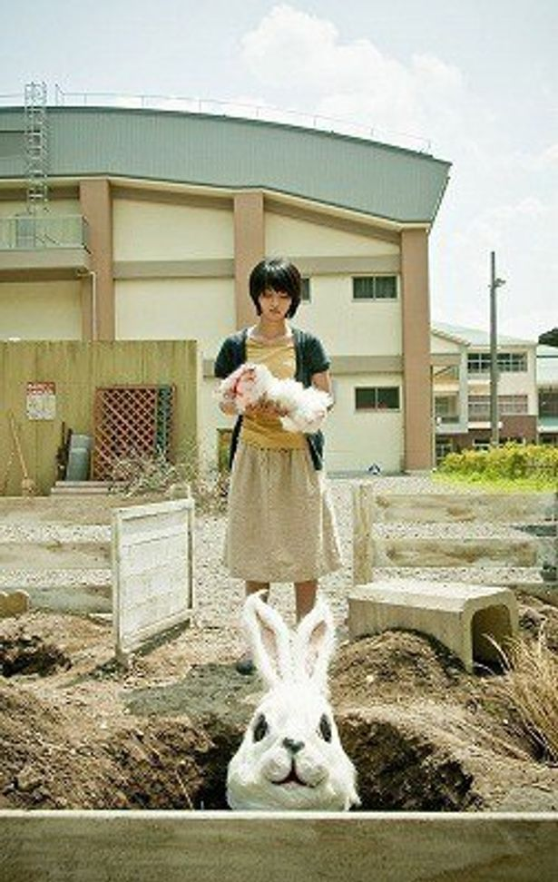 清水崇の監督最新作の3D映画『ラビット・ホラー3D』で満島ひかりが主演