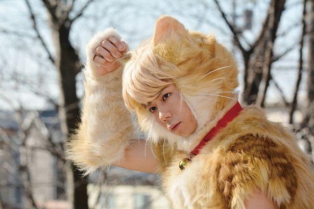 """キスマイ北山が映画初出演&初主演で""""猫""""になる!?"""