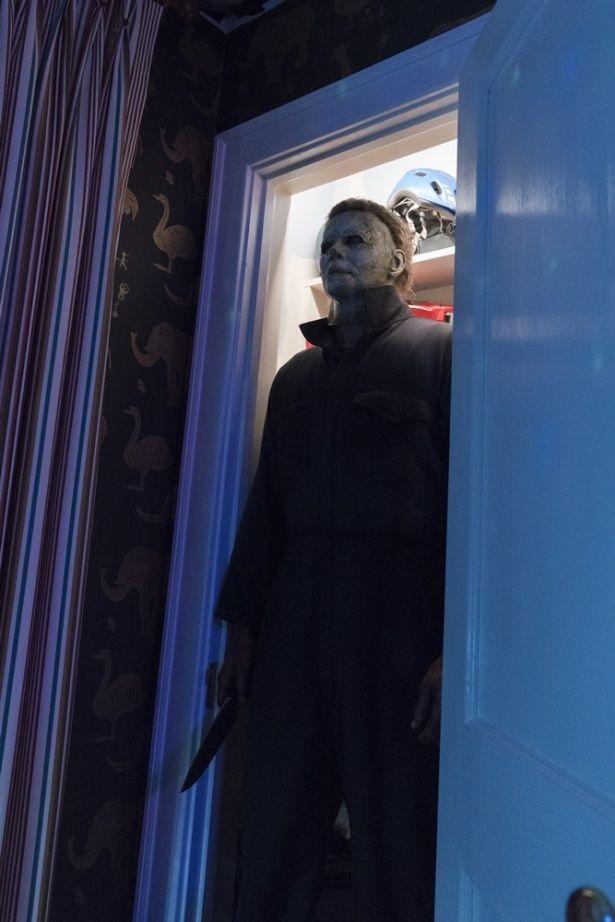 クローゼットにも潜伏しているよ…怖すぎ!