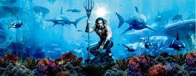 海底王国の映像美に圧倒される『アクアマン』、本日よりデジタル先行配信先スタート!
