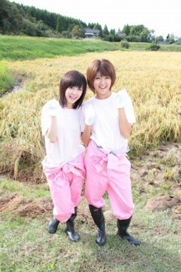 里田まいがプロデュースするブランド米「里田米」の収穫ツアーに参加した清水佐紀と徳永千奈美