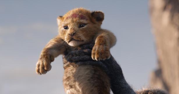 """【写真を見る】""""超実写版""""の『ライオン・キング』…モフモフの赤ちゃんシンバが可愛すぎ!"""