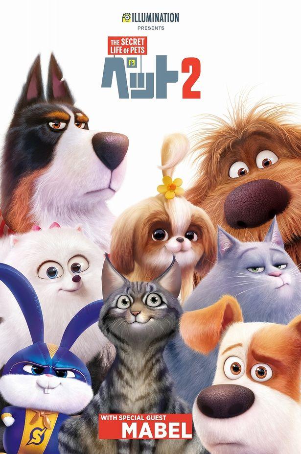 あなたのペットが『ペット2』の世界に仲間入りできるかも?画像はイラスト化イメージポスター