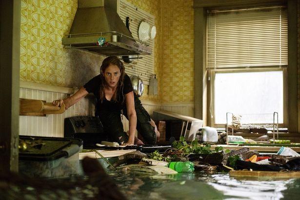 浸水した自宅がワニの巣窟となってしまう!